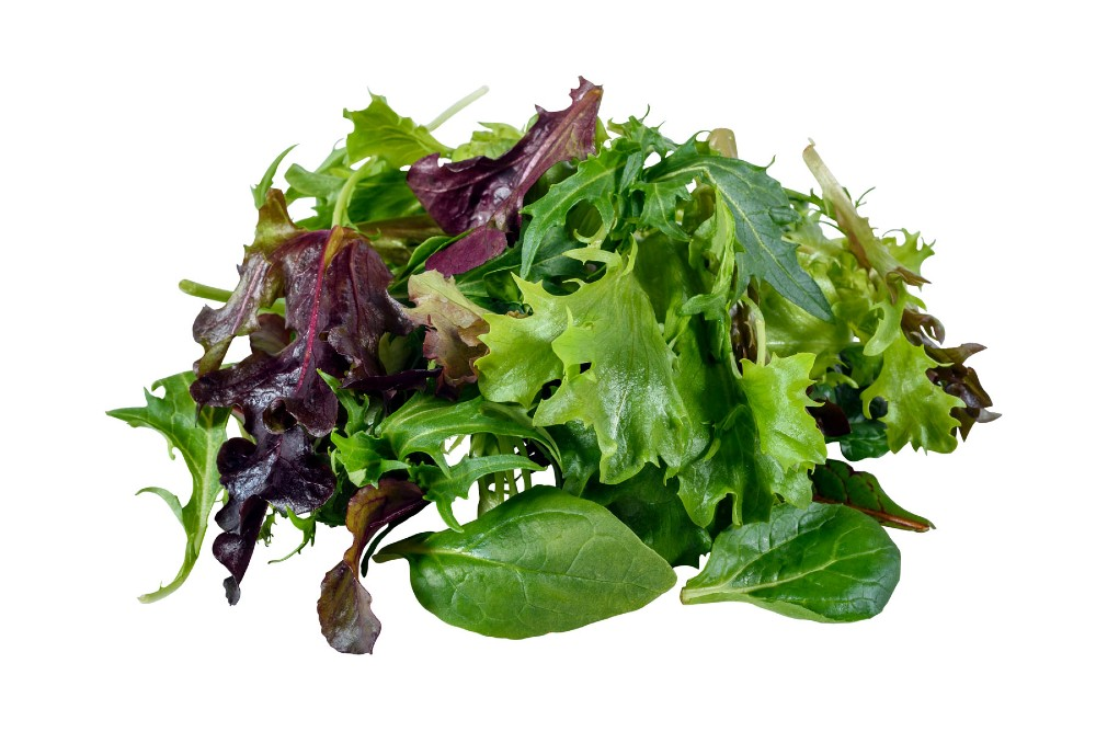 Fine Cut Salad Mix